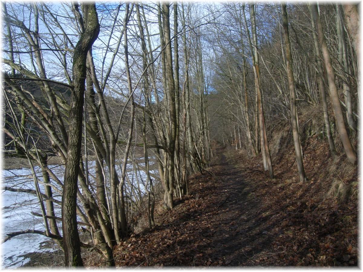 Wonderful life outdoors - Innenwand feucht was tun ...